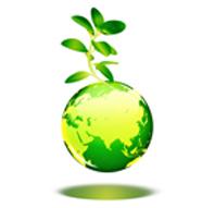 5 miljötips för den medvetna nyföretagaren