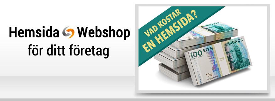 Hur mycket kostar en hemsida?